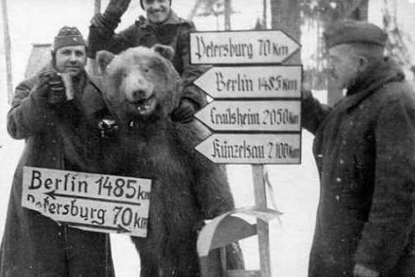 18.) Private Wojtek was a (real) Syrian brown bear cub found in Iran and adopted by soldiers of the 22nd Artillery Supply Company of the Polish II Corps in World War II.