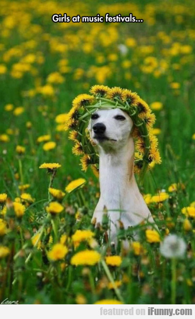 Girls At Music Festivals..
