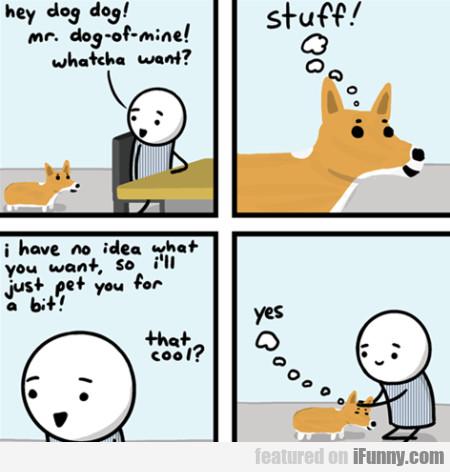 Hey Dog Dog Mr Dog-of-mine