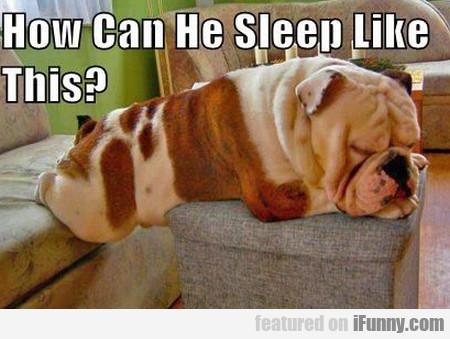 How Can He Sleep Like This?