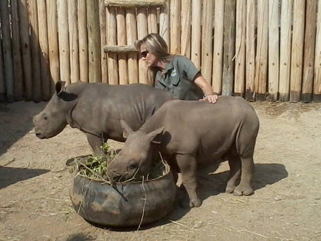 They sent her to the Care For Wild Africa's wildlife rehabilitation center, joined by others orphans just like her.