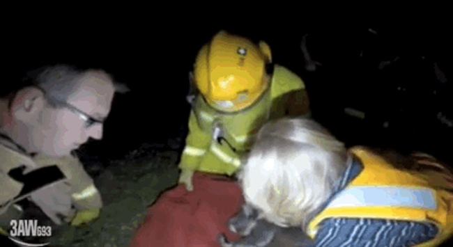 After massaging his lungs in an attempt to start his breathing, the wildlife expert took one for the team while waiting for the oxygen mask to arrive.