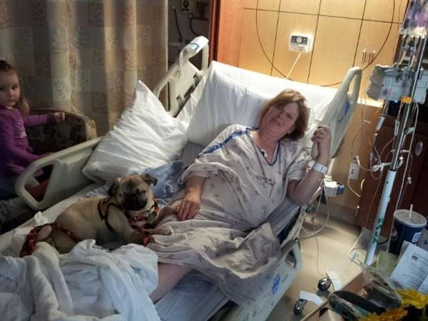 Rodney and his wife, after adopting Xander, had him officially certified as a therapy dog. You can see him comforting his new mom in the hospital in this picture.