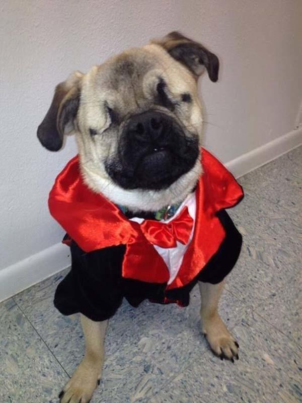 He loves rockin' a good suit.