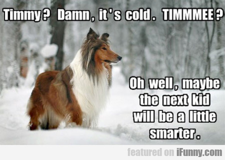 Timmy Damn, It's Cold. Timmmee