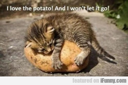 I Love The Potato. And I Won't Let It Go!