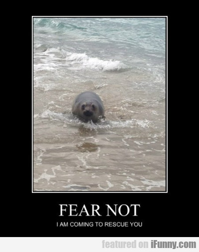 Fear Not I M Coming To Rescue You