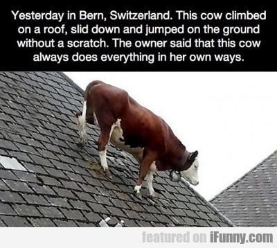 Yesterday In Bern, Switzerland...