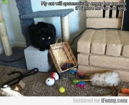 My Cat Will Systematically Empty Her Toy Box...